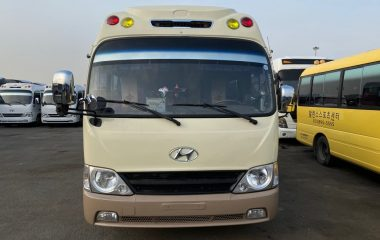 2009 Hyundai County Long