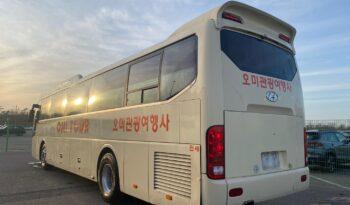 2011 Hyundai Universe Prime full